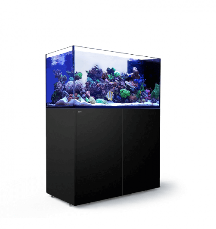 Red Sea Reefer Peninsula 500 Meerwasseraquarium Komplettset