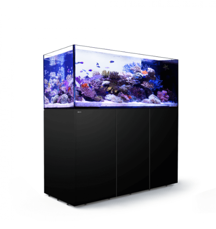 Red Sea Reefer Peninsula 650 Meerwasseraquarium Komplettset