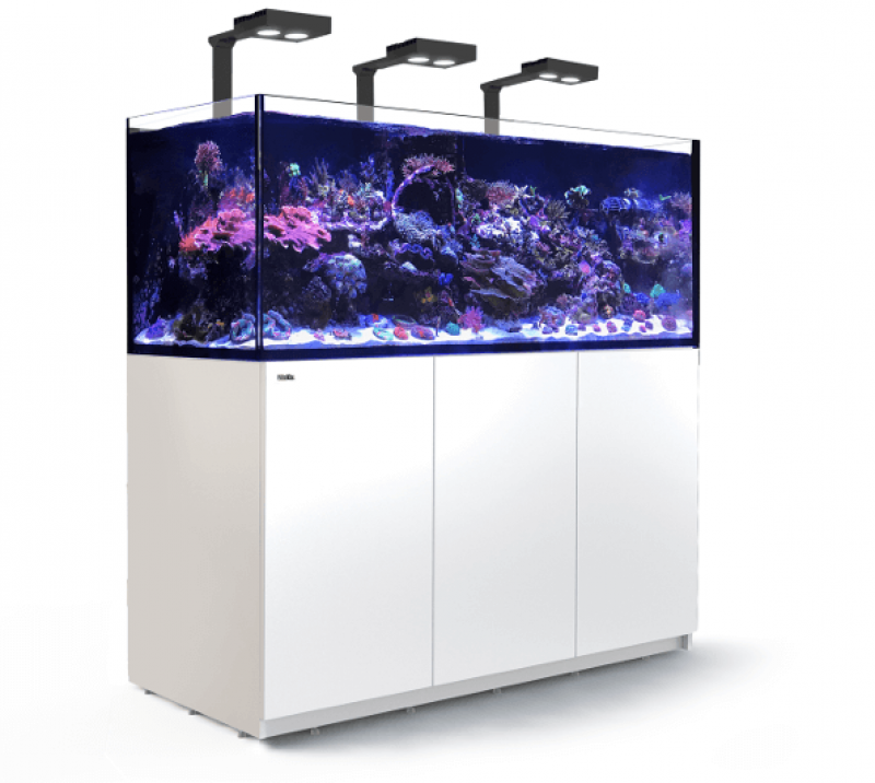 Red Sea Reefer XL 525 DELUXE Meerwasseraquarium Komplettset