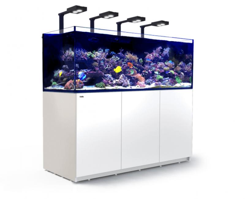 red sea reefer xxl 750 deluxe meerwasseraquarium komplettset kaufen hp aquaristik. Black Bedroom Furniture Sets. Home Design Ideas